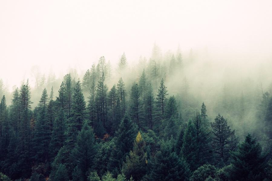 Living with Seasonal Affective Disorder
