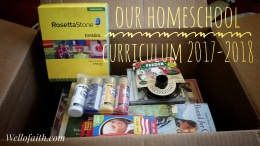 Our Homeschool Curriculum 2017-2018 Wellofaith.com