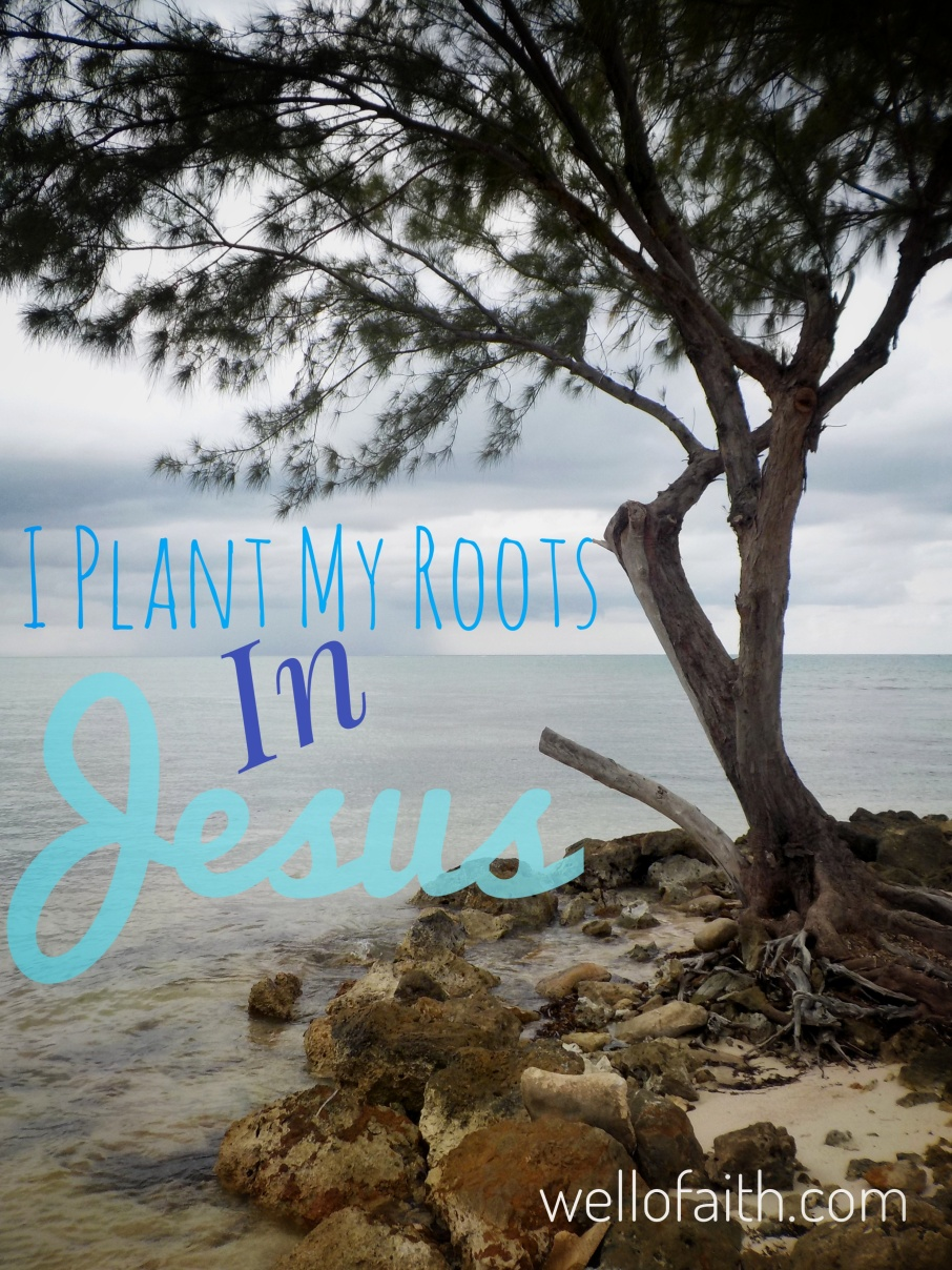 I Plant My Roots in Jesus